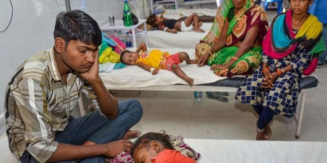 21 deaths reported in Assam due to Japanese Encephalitis
