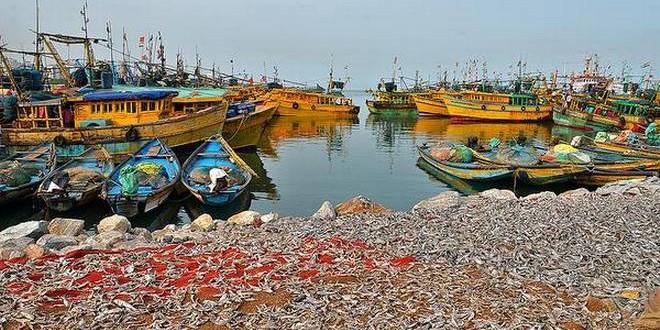 Govt to establish three new fishing harbors