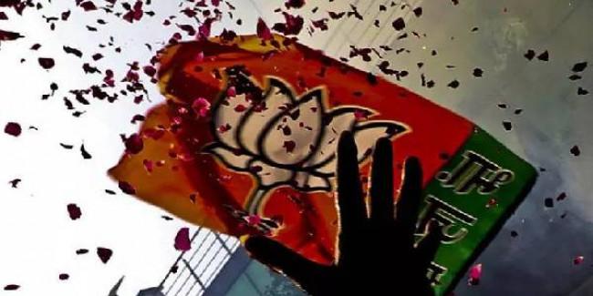Gujarat: BJP sweeps Junagadh municipal election, Congress reduced to 1 seat