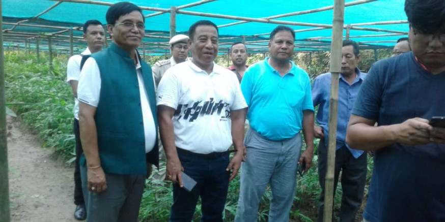 Collective Effort Can Achieve CM's Green Manipur Mission Sooner: Forest Minister