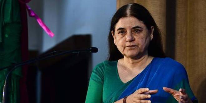 बिजली विभाग की शिकायतों पर चढ़ा मेनका गांधी का पारा, एसडीओ को जमकर लगाई लताड़