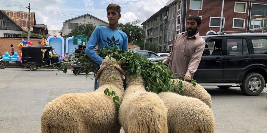 कर्फ़्यू, धारा 144 के बीच कश्मीर में कैसे मनेगी ईद?