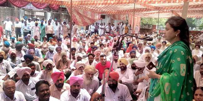 Cong sarpanches open front against Mansa administration