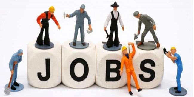 सरकार ने बेरोजगारों के लिए खोला नौकरियों का पिटारा, 1600 से अधिक नौकरियां
