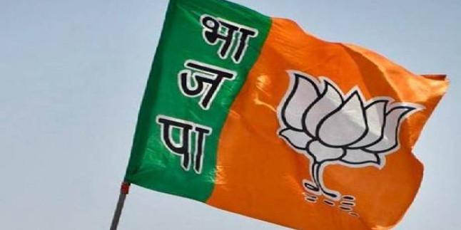 संगठन चुनाव में नेतृत्व की समस्या को सुलझाएगी मध्यप्रदेश भाजपा