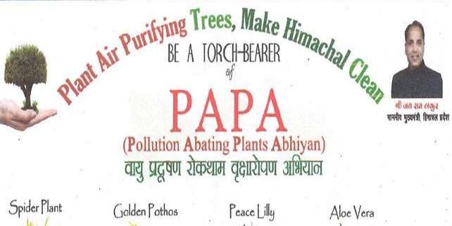 पापा ने रोका प्रदूषण, रोग भी भगाया; ऑक्सीजन की मात्रा में भी बढ़ोतरी