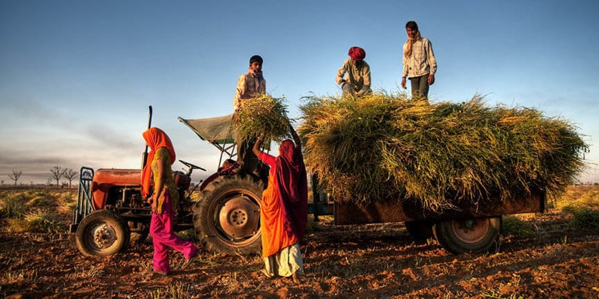 Maharashtra credit plan sets lending target for agriculture sector, slightly more than last year's