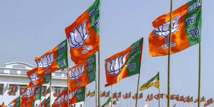 चुनावों के लिये भाजपा की खास तैयारी, संकल्प पत्र पर सोशल मीडिया का भी होगा असर