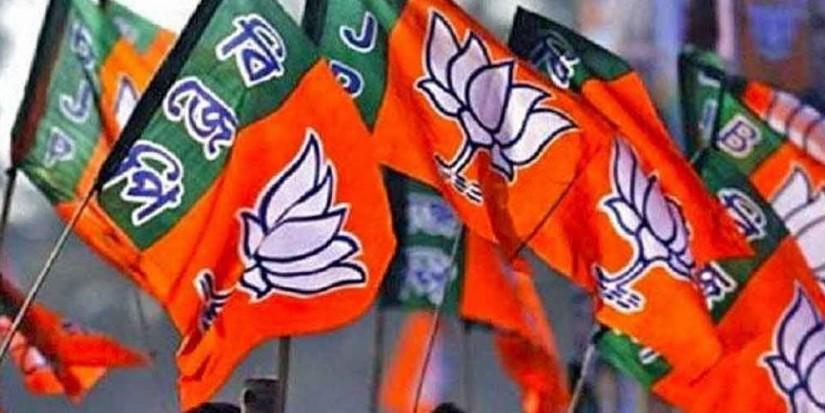 अब विधानसभा चुनाव की तैयारी में जुटेंगे भाजपा के कार्यकर्ता