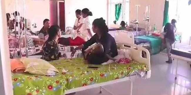 After Bihar, Now Assam On Alert For Japanese Encephalitis Outbreak