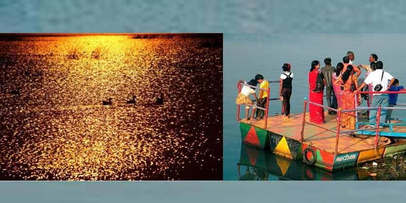 Odisha govt plans to open houseboat service in Chilika, Bhitarkanika