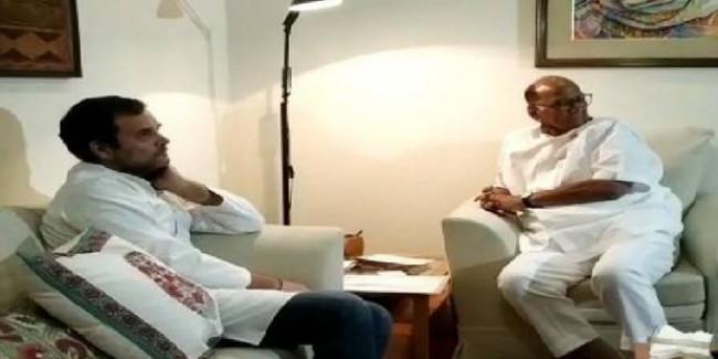 विधानसभा चुनाव में राकांपा ने कांग्रेस से बराबर सीटें मांगी, कहा- आम चुनाव में हमारा प्रदर्शन बेहतर
