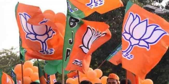 लोकसभा चुनाव में जितने वोट मिले, उतने सदस्य बनाएगी भाजपा
