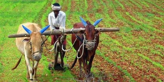 कर्नाटक: 13,000 से ज्यादा किसानों के खातों से गायब हुई कर्ज माफी की रकम