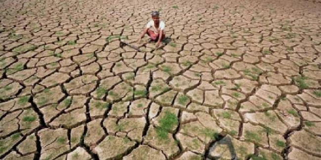 Jharkhand stares at drought with 40% rainfall deficit