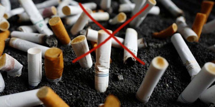 Mizoram CM calls for making state tobacco free