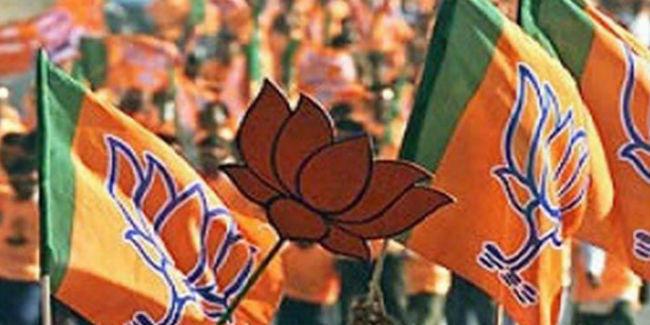 भाजपा ने 15 दिनों में बनाये 6.25 लाख नये सदस्य