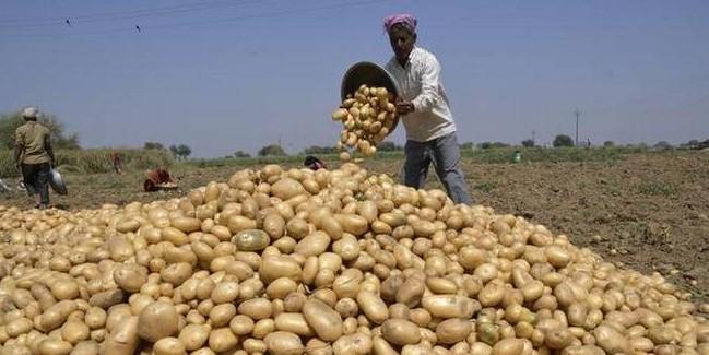 गुजरात में Pepsico बनाम किसान: आलू किसानों के समर्थन में आई सरकार
