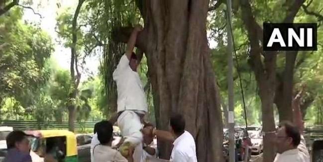 राहुल गांधी के इस्तीफे से नाराज कार्यकर्ता ने की आत्महत्या की कोशिश, दफ्तर के बाहर मची अफरातफरी