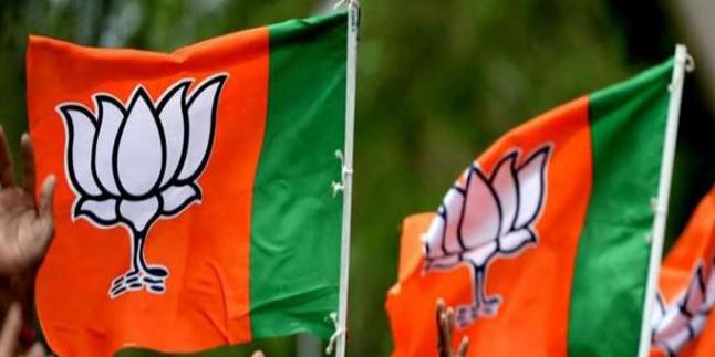 प्रदेश महामंत्री अनिल गोयल ने कहा कि अब किशोरों को भी पार्टी से जोड़ेगी भाजपा
