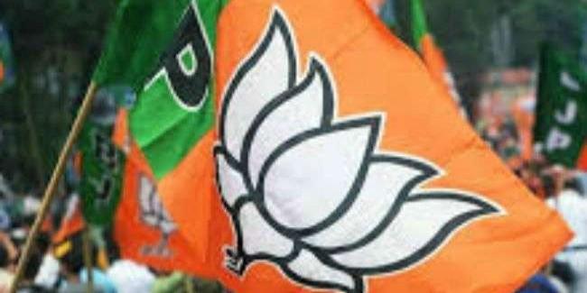 भाजपा को अगस्त तक हिमाचल से मिल सकता है नया अध्यक्ष