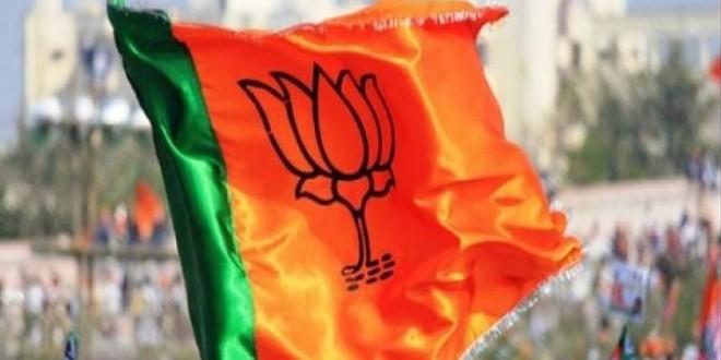 लोकसभा चुनाव: गुजरात में बीजेपी को 'जादू' का सहारा, प्रचार टीम में शामिल किए 52 जादूगर