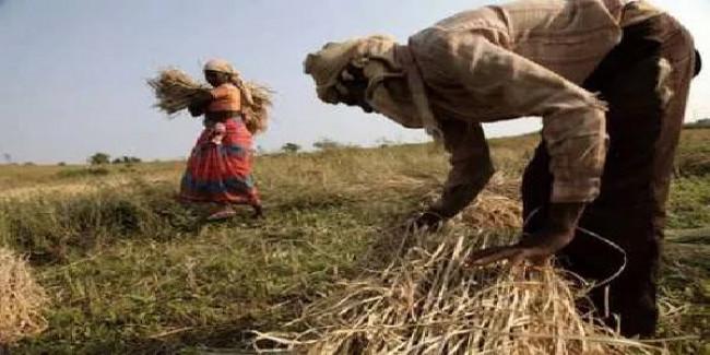 सीएम भूपेश बघेल: दोबारा नही करेगे किसानो का कर्ज माफ