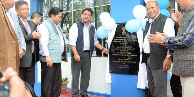 Meghalaya can play pivotal role in supply of organic milk: Conrad Sangma