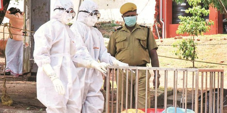 Central team probing if Nipah case in Kerala was caused by infected guava