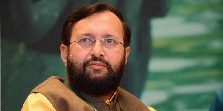 State gets Rs 238.16 crore from Centre for afforestation