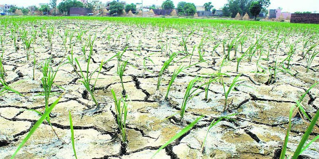 CM to call all-party meeting over groundwater depletion