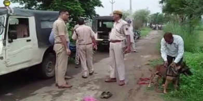 go cow trafficking in alwar a man of beating
