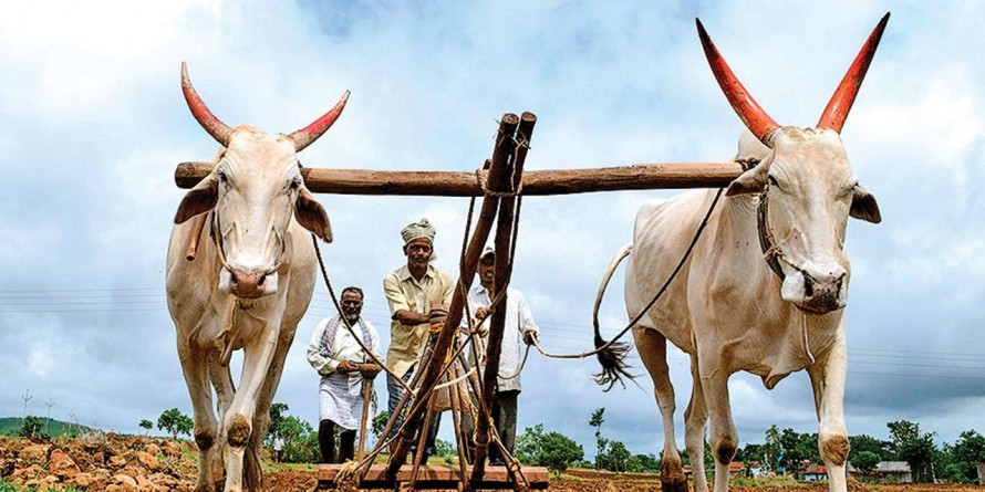 Loan waiver: BJP, Congress clash over farmers' debt in Gujarat