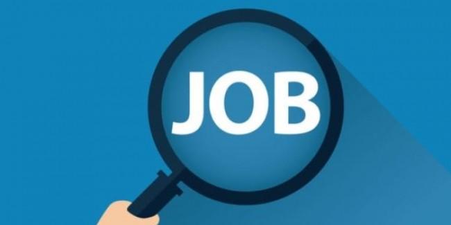 बेरोजगारी में चरम पर पहुंचे हरियाणा के युवाओं को रोजगार दिलाने की जेजेपी की कोशिश, करीब 100 युवाओं को दिए नियुक्ति पत्र
