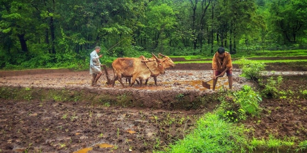 Goa's 'Model Villages' Shouldn't Be a Model for Anything