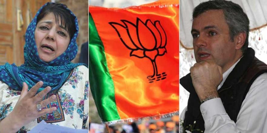 आतंकी बुरहान वानी और ज़ाकिर मूसा के घर त्राल में बीजेपी ने लिए सबसे ज्यादा वोट
