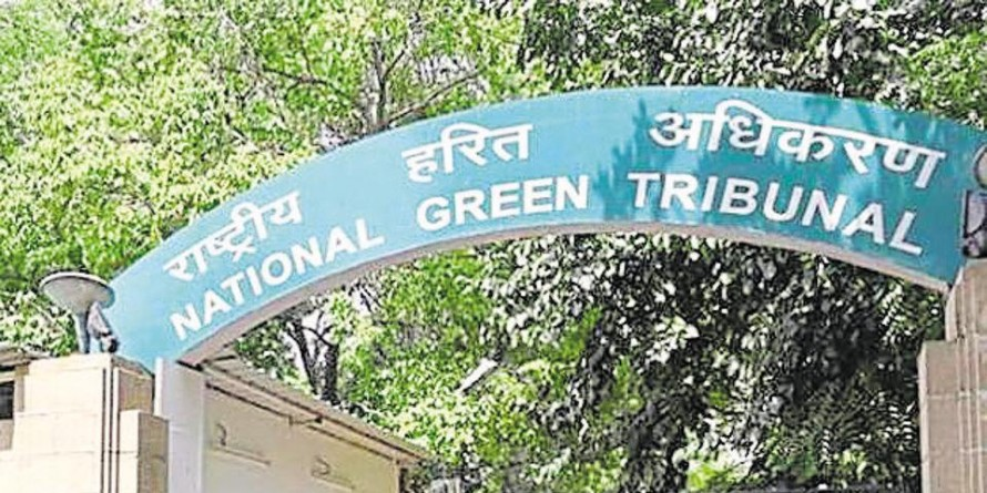 NGT fines Goa government ₹1 cr for not acting against illegal structures