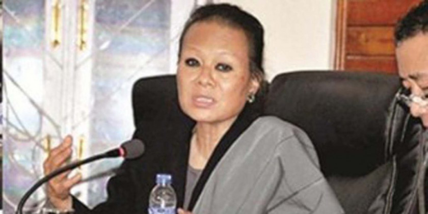 Nagaland govt forms 3-member commission to study & advise on RIIN