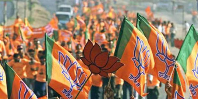 भाजपा संगठन के चुनाव एक सितंबर से रामप्रताप-विष्णुदेव को दी गई जिम्मेदारी